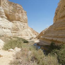2018-08-13/29 Deserto e Terra Santa 5