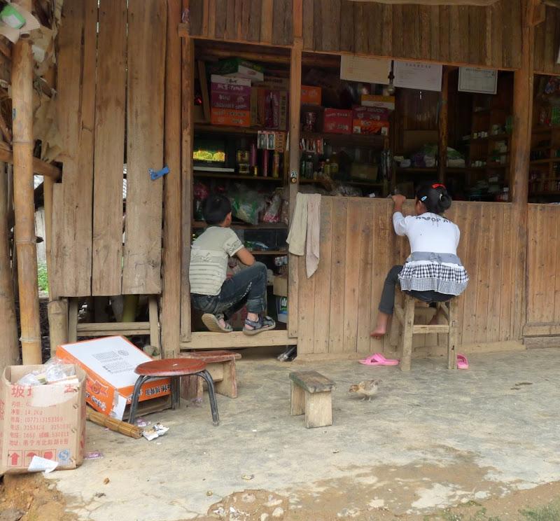 Chine . Yunnan BA MEI 2 - P1260968.JPG