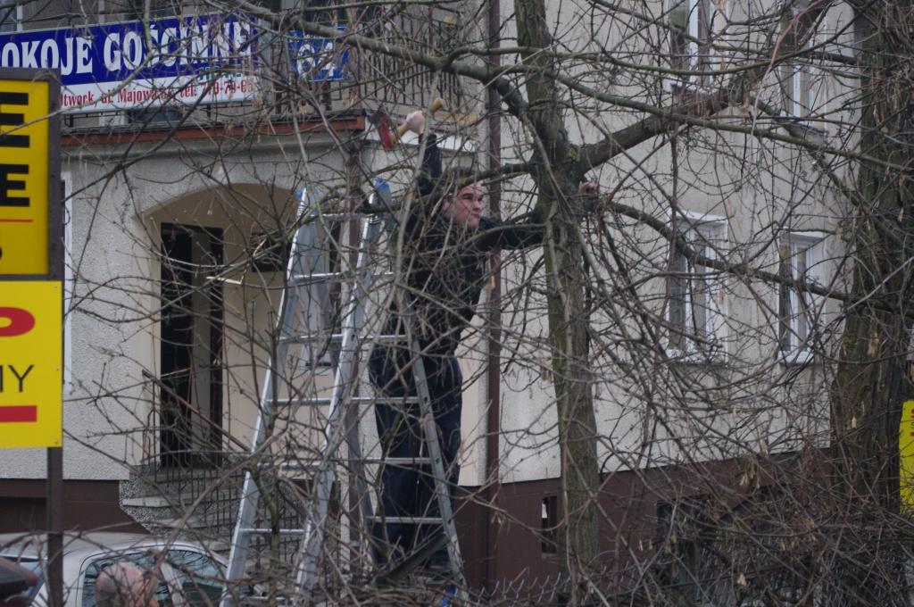 Belsk - Świerk 2011 (Kiń) - PENX2133.jpg
