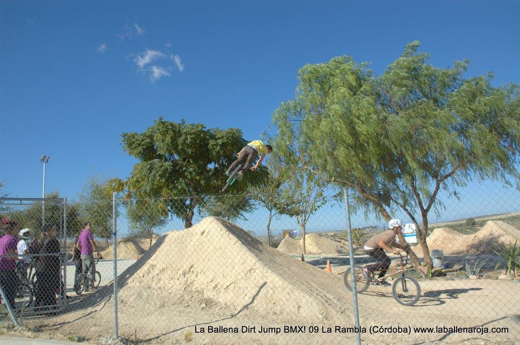 Ballena Dirt Jump BMX 2009 - BMX_09_0031.jpg