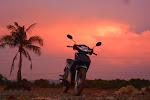 Motorbiking Vietnam is hands-down the best way to get around the country