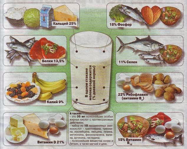 Витамины в молочных продуктах