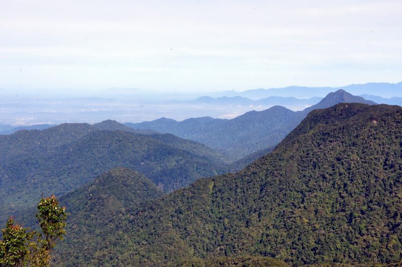 Dunst zieht über das Malayische Hochland