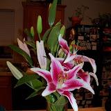 Bouquets - 101_0095.JPG