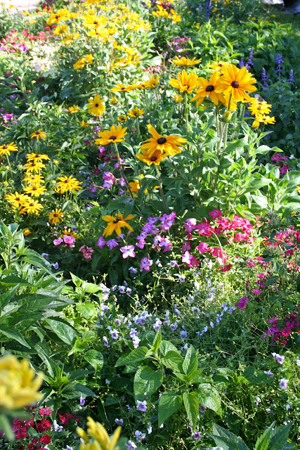 Milkweed Gardens: Places: Butterfly Garden at Disney's Ft ...