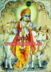 DSC08149.JPG Krishna helig ko flöjt bättrad med amorism