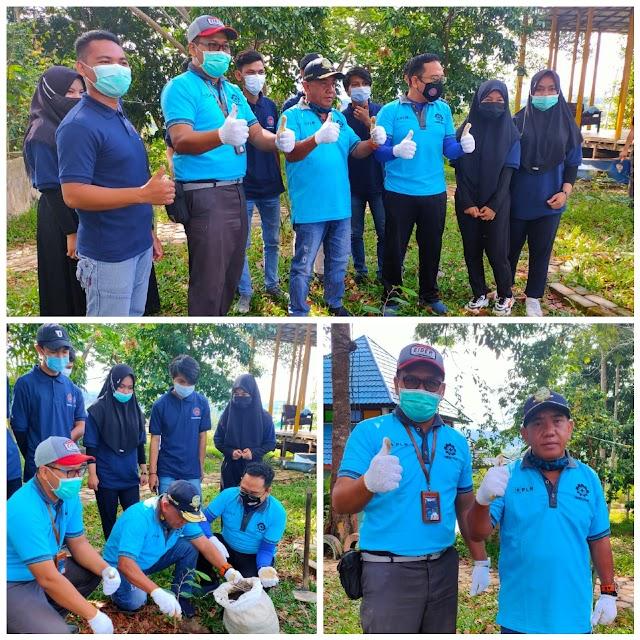 PLN dan Politeknik Kotabaru Tanam Bibit Pohon Bersama