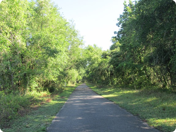 5 Withlacoochee Trail Scene