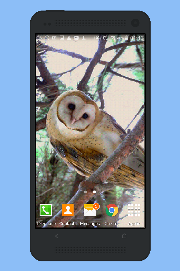 Owl Live Wallpaper HD- screenshot