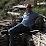 Rolf Steiner's profile photo