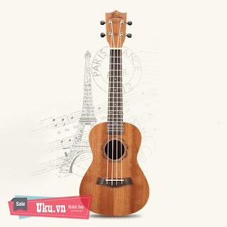 đàn ukulele concert lasson