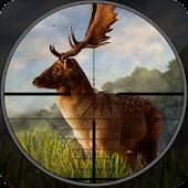 Wild Deer Hunter : Deer Shooting Games Android APK Download Free By Endgames