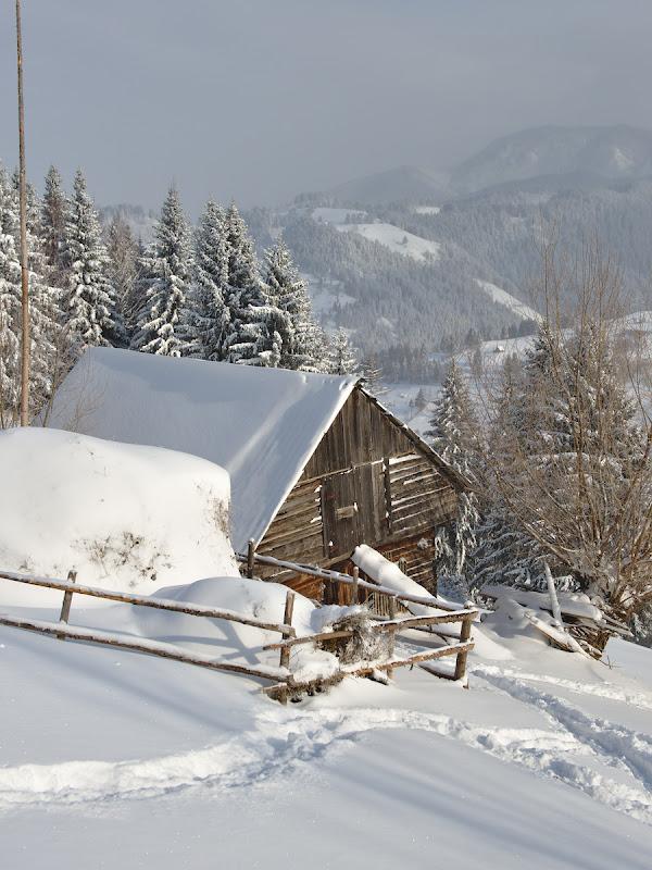 Peisaj de iarna.