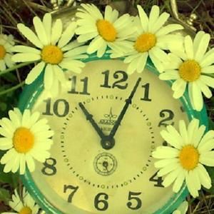 download flower clock live wallpaper apk