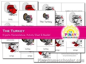 The Turkey Nomenclature Cards