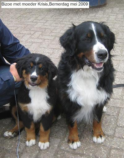 Moeder Krisis en Bizoe mei2009.JPG