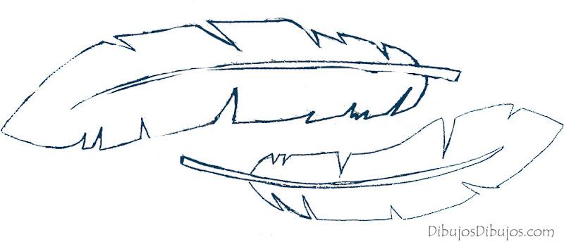 Dibujos de plumas.  DIBUJOS DIBUJOS
