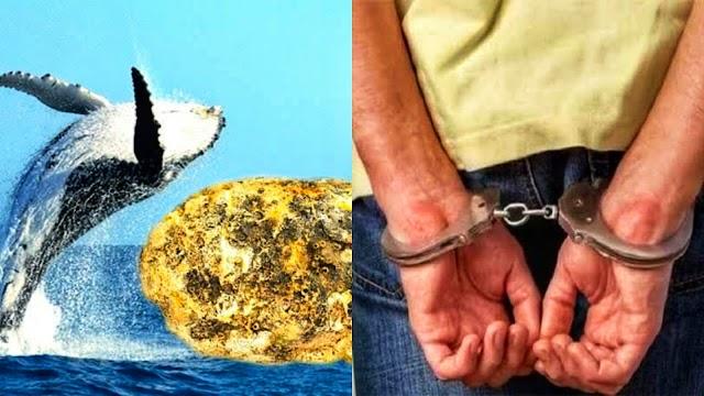 1.7 करोड़ की उल्टी बेचने निकला था व्यक्ति, पुलिस ने किया आरेस्ट..!