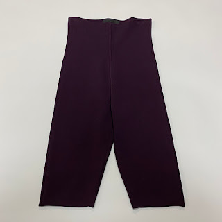 Alexander Wang Purple Bike Shorts