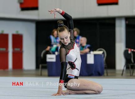 Han Balk Fantastic Gymnastics 2015-0247.jpg