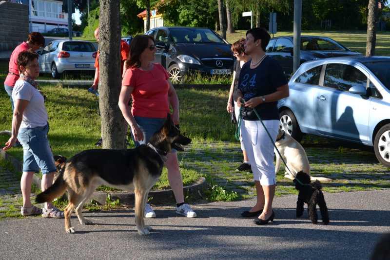 7. Juni 2016: On Tour in Neustadt a.d. Waldnaab - DSC_0434.JPG