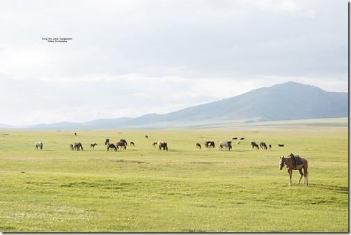 Kyrgyzstan39