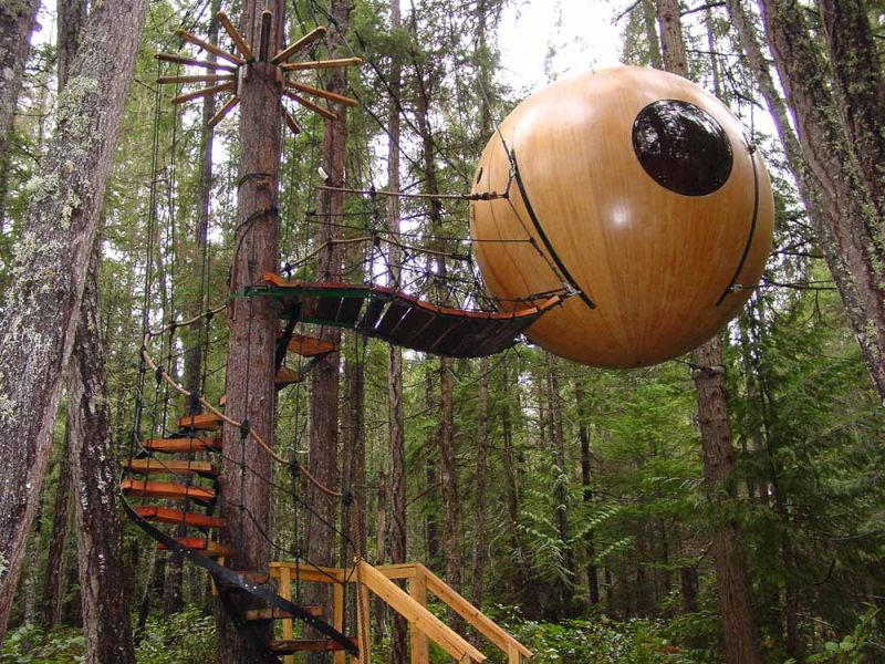 Round Tree House for Small Family