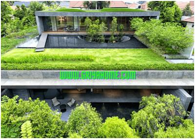Membangun Taman Atap Rumah