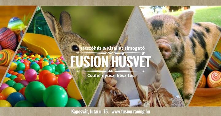 Kisállat simogató Fusion Játszóház Kaposvár 2016
