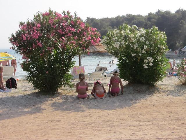 Farska dovolenka Chorvatsko 2012 - IMG_0365.JPG