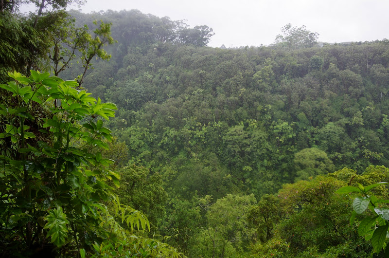 06-23-13 Big Island Waterfalls, Travel to Kauai - IMGP8848.JPG