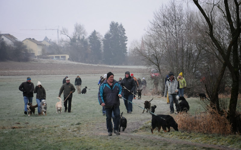 20140101 Neujahrsspaziergang im Waldnaabtal - DSC_9774.JPG