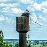 Аист на водонапорной башне возле Жеремино