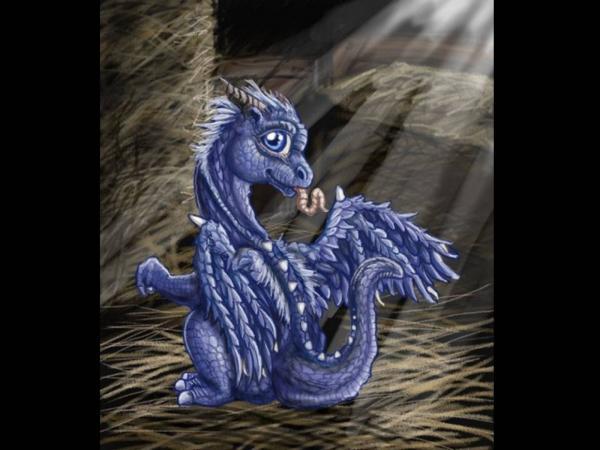 Little Dragon Baby, Spirit Companion 4