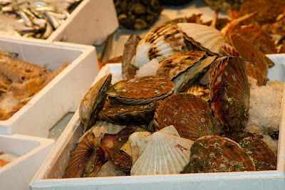 Scallops at the Fish Market - Venice, Italy