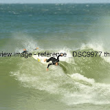 _DSC9977.thumb.jpg