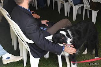 Photo: Rev Rowdy's dog