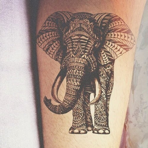 elefante_tatuagens_38