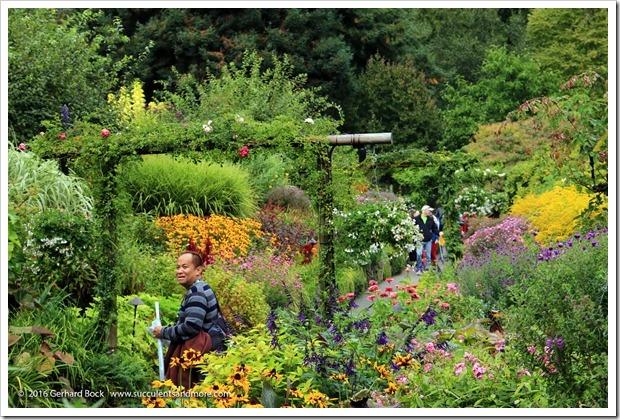 160906_Butchart_Gardens_0113