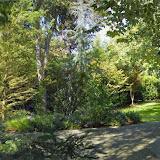 10-26-14 Dallas Arboretum - _IGP4311-PANO.jpg