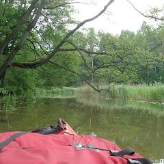 Rzeka Kośna