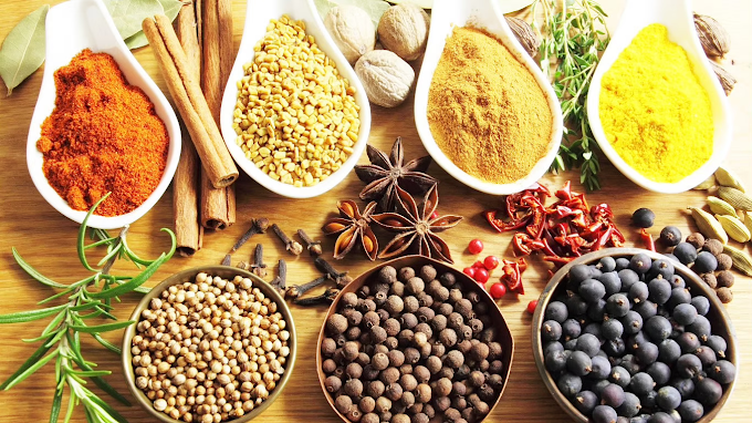 THE HEALING POWER OF INDIAN SPICES