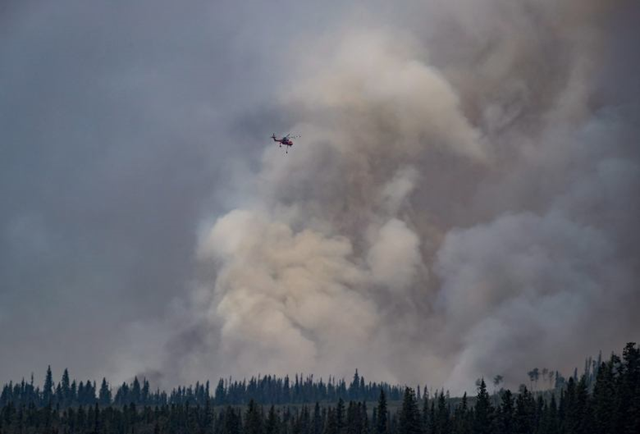 A helicopter being used to fight a smaller fire nearby flies past a large plume of smoke rising from a wildfire near Fraser Lake, B.C., on 15 August 2018. Photo: The Canadian Press