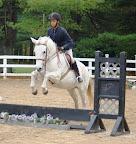 Cilla at Harmony Hill Horse Show
