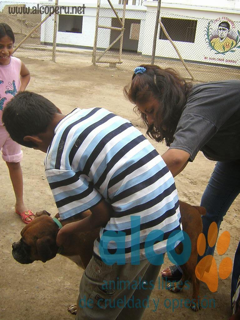 Asistencia Hualcara Cañete terremoto 2007 (5)