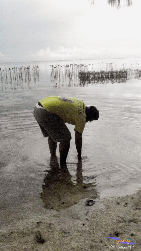 pulau pramuka, 1-2 Meil 2015 fuji  35