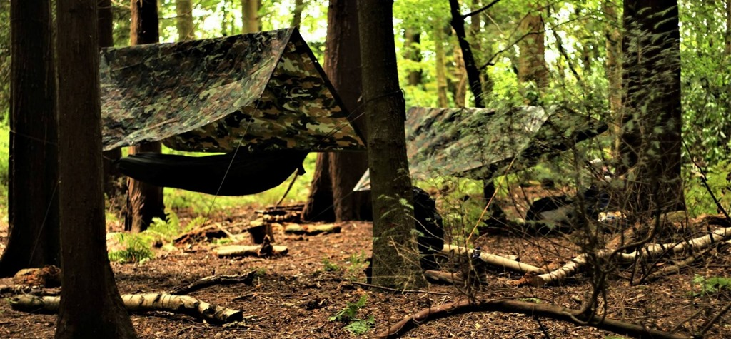 [Bushcraft-and-Woodland-Survival-Cour]