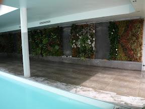 chez un privé à Lyon , grand panneaux végétaux dans un but acoustique