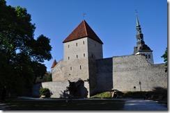 5 Tallin freedom square