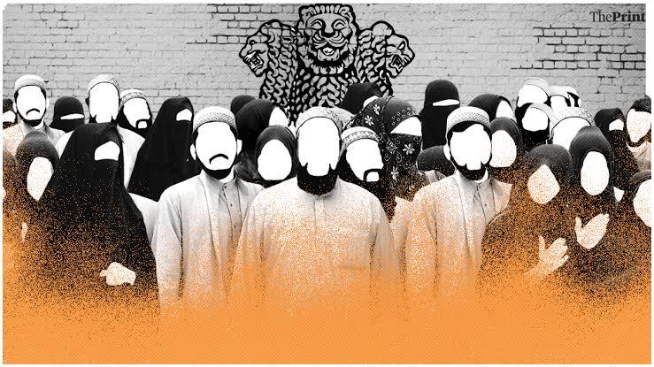 Hantu Radikalisme, Jelmaan Islamophobia